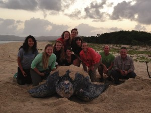 The visiting Duke Sea Turtle Class with their Dawn Turtle on Sandy Point, St. Croix.