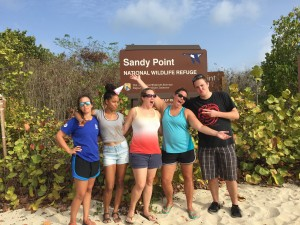 Our 2015 Leatherback Interns hard at work