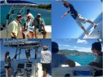 Field scientists conducting marine wildlife surveys in Christiansted Harbor